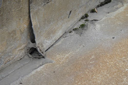 Water Under Insulation